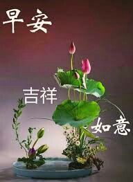 Pin By On Morning Wish Good Morning Happy Chinese New Year