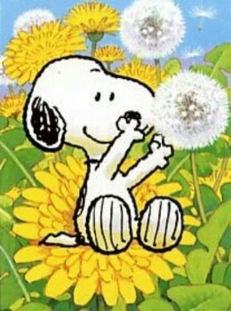 Solve Snoopy loving Spring jigsaw puzzle online with 80 pieces