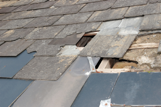 The Most Common Types Of Roof Damage Serviceandrepairneeds Home Repairs Home Repair Roof Repair Diy