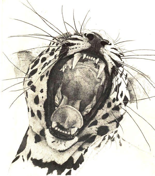фотографий картинки кошки ягуар графика когда деревню входил