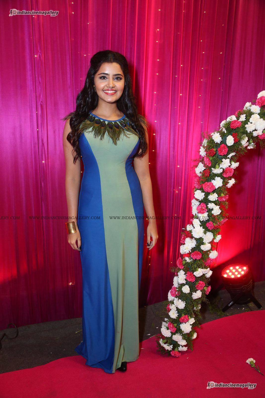 Anupama Parameswaran At Apsara Awards 2017 30 Indian Cinema