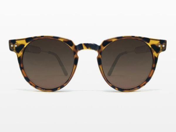 dab13ad8f4 Spitfire - Teddy Boy Tortoise Shell Sunglasses
