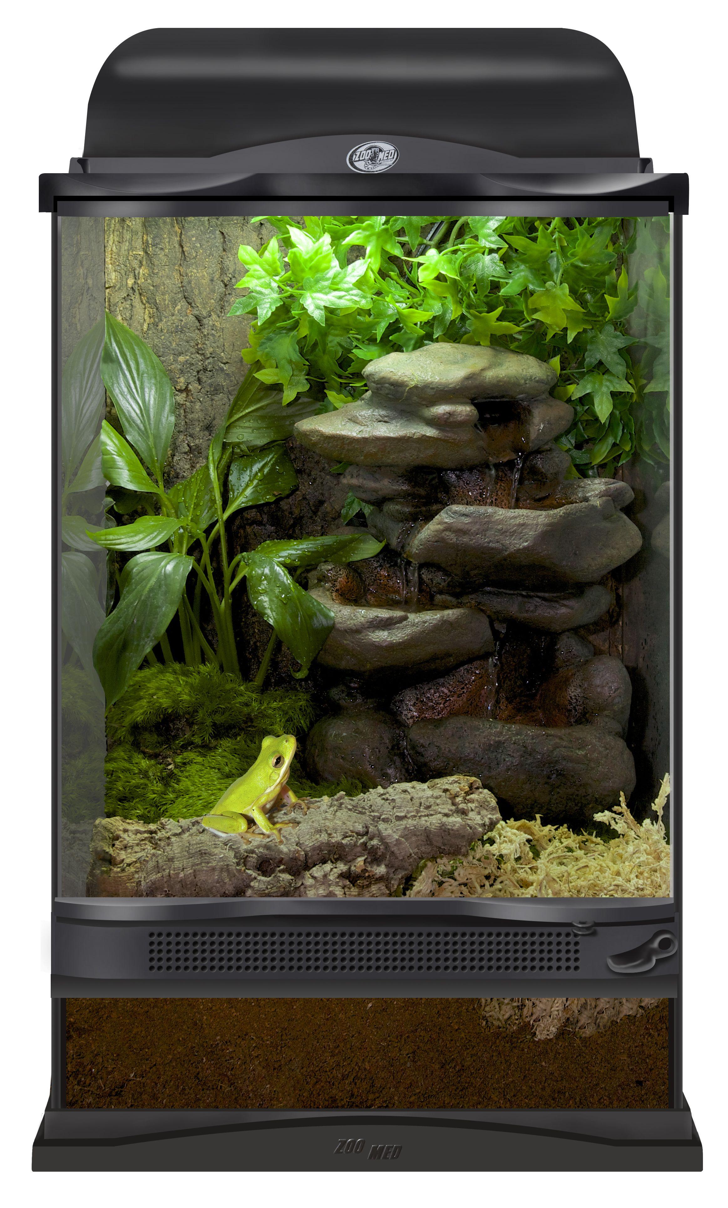 Xx zoo med terrarium setup for a tree frog diy this terrarium