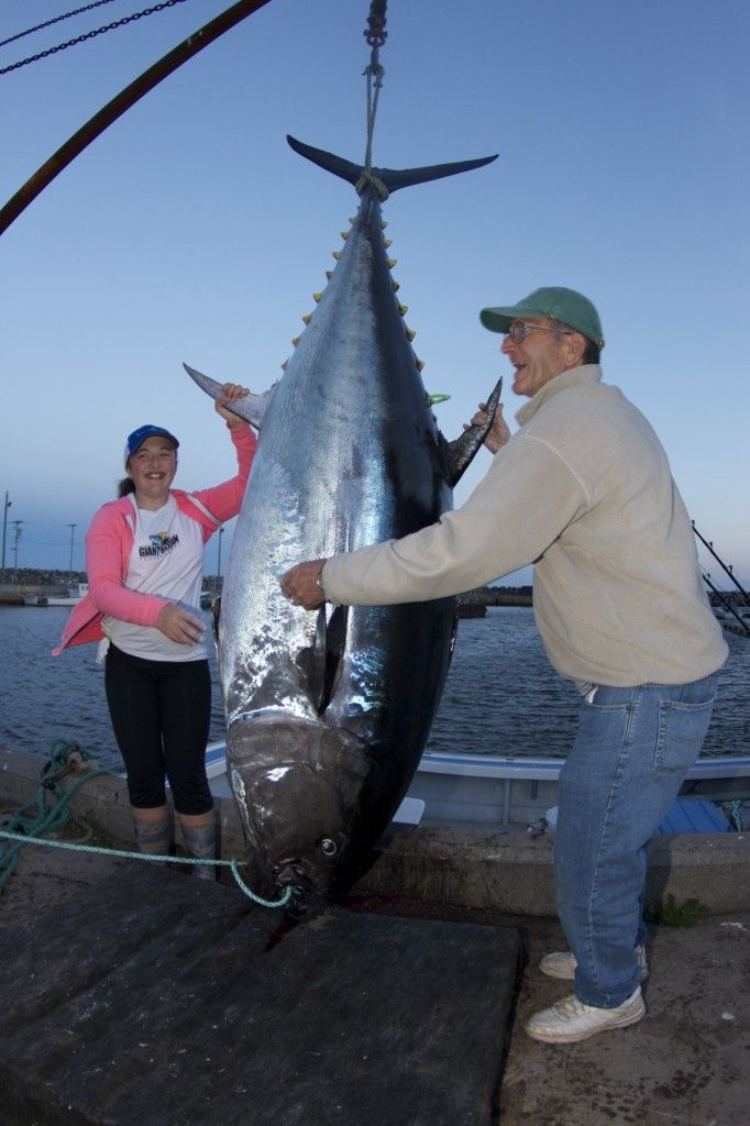 World Record Tuna Caught By 12 Year Old Girl Fish And