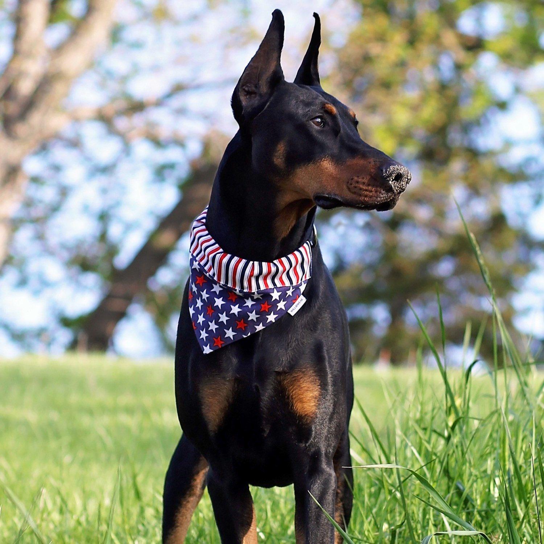 Willowearwags Shared A New Photo On Etsy Pet Collars Dog Bandana Dogs