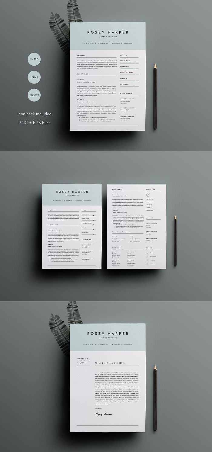 3 Page Resume Template INDD