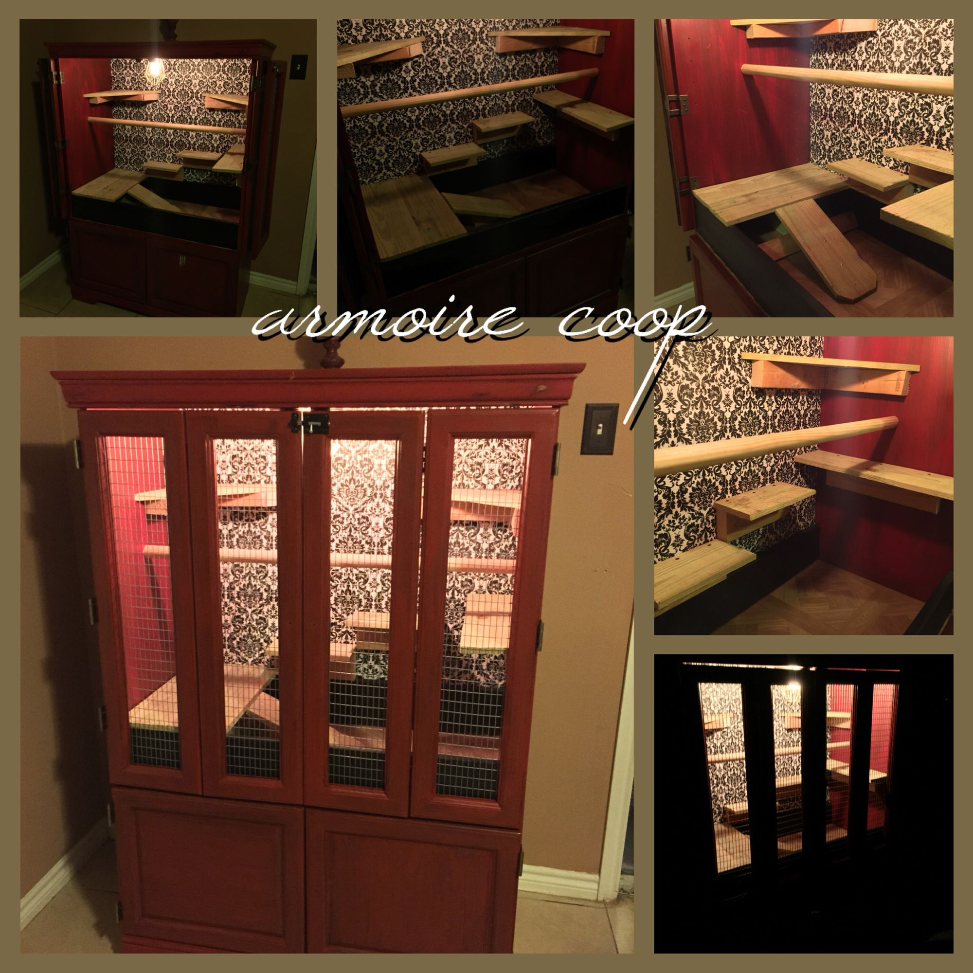 This is my new homemade indoor chicken coop for my Seramas...I ...