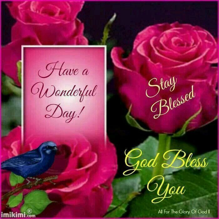 Good morning sister and all, have a wonderful day,☆♡☆.
