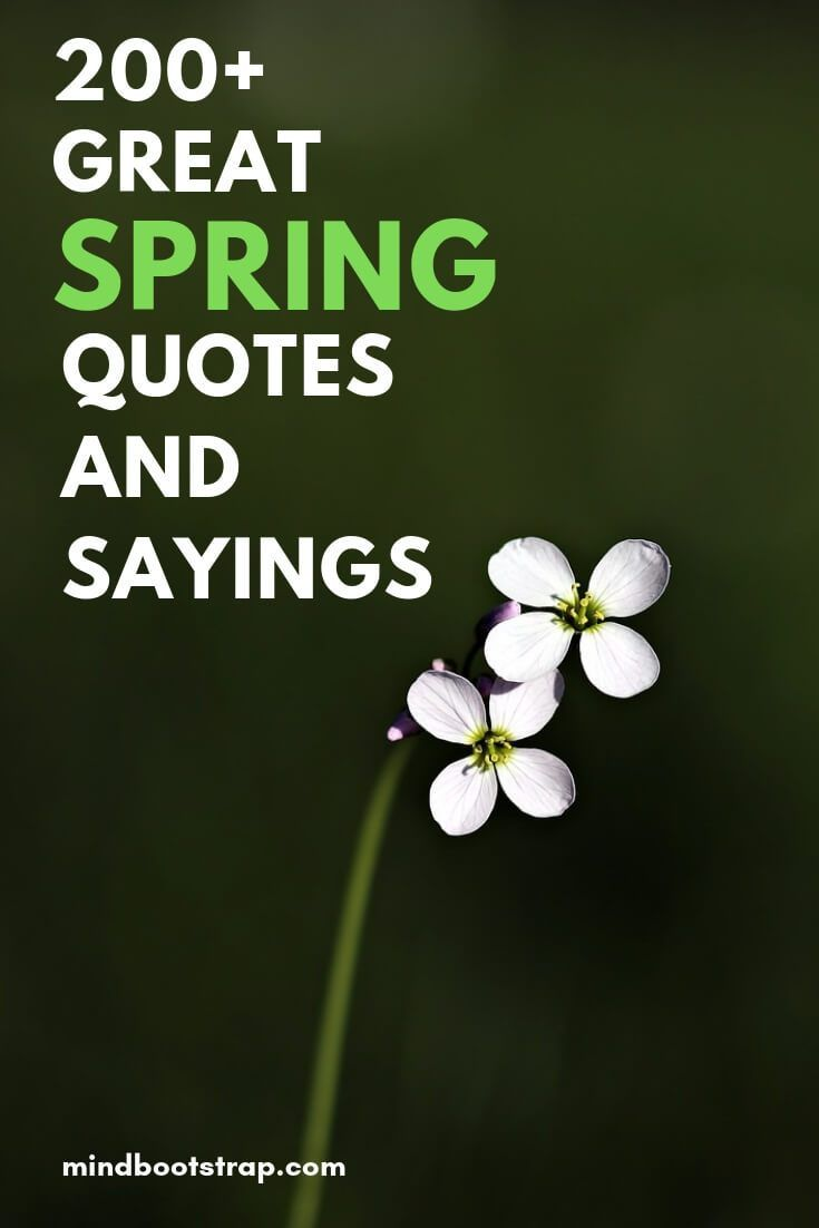 200+ Happy, and Inspirational Spring Quotes & Sayings ...