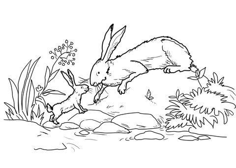 Der kleine braune Hase und der große braune Hase waren unten beim ...