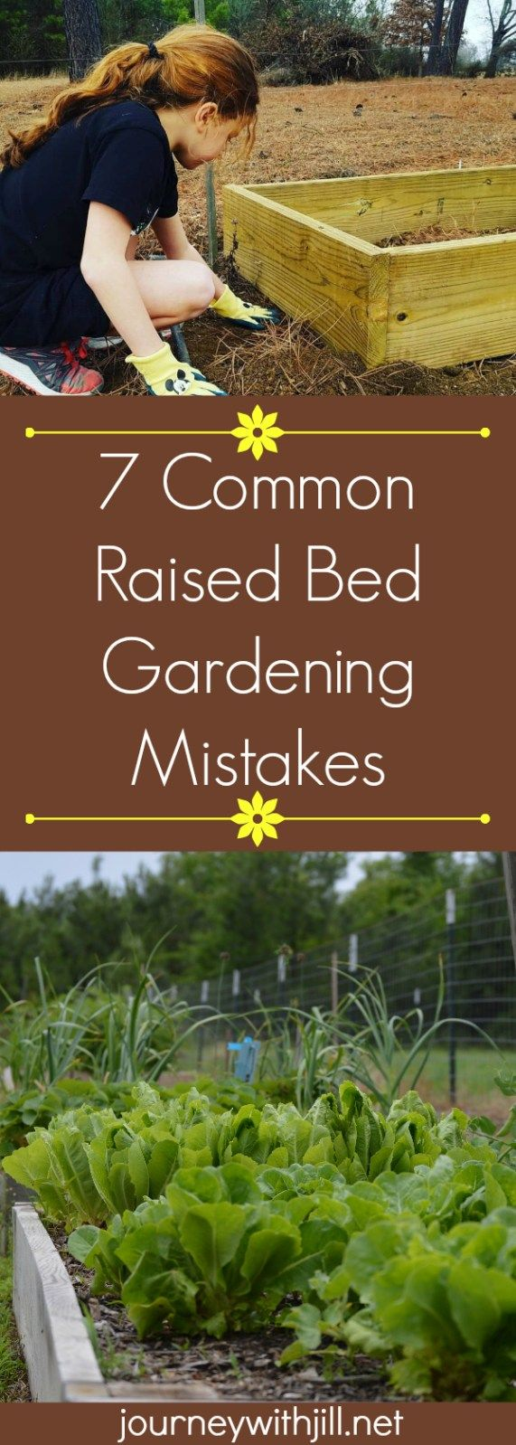 Garden bed with trees   Common Mistakes in Raised Bed Gardening  Yard trees plants