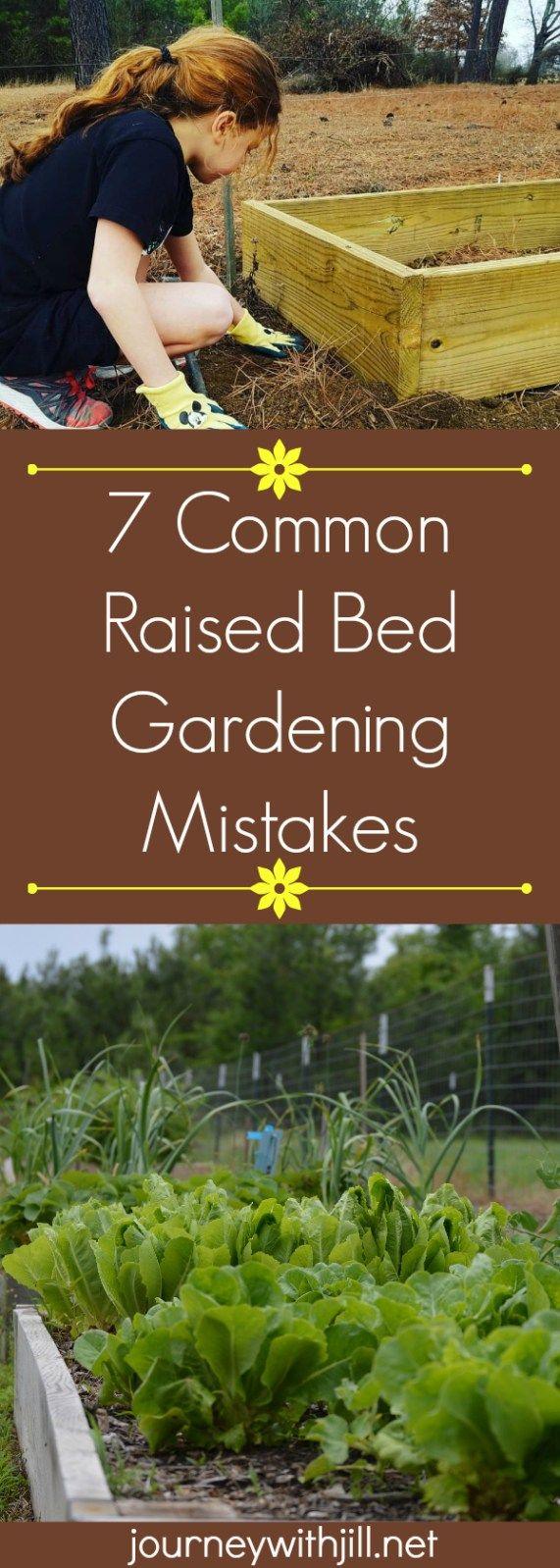 7 Common Mistakes in Raised Bed Gardening - The Beginner's Garden