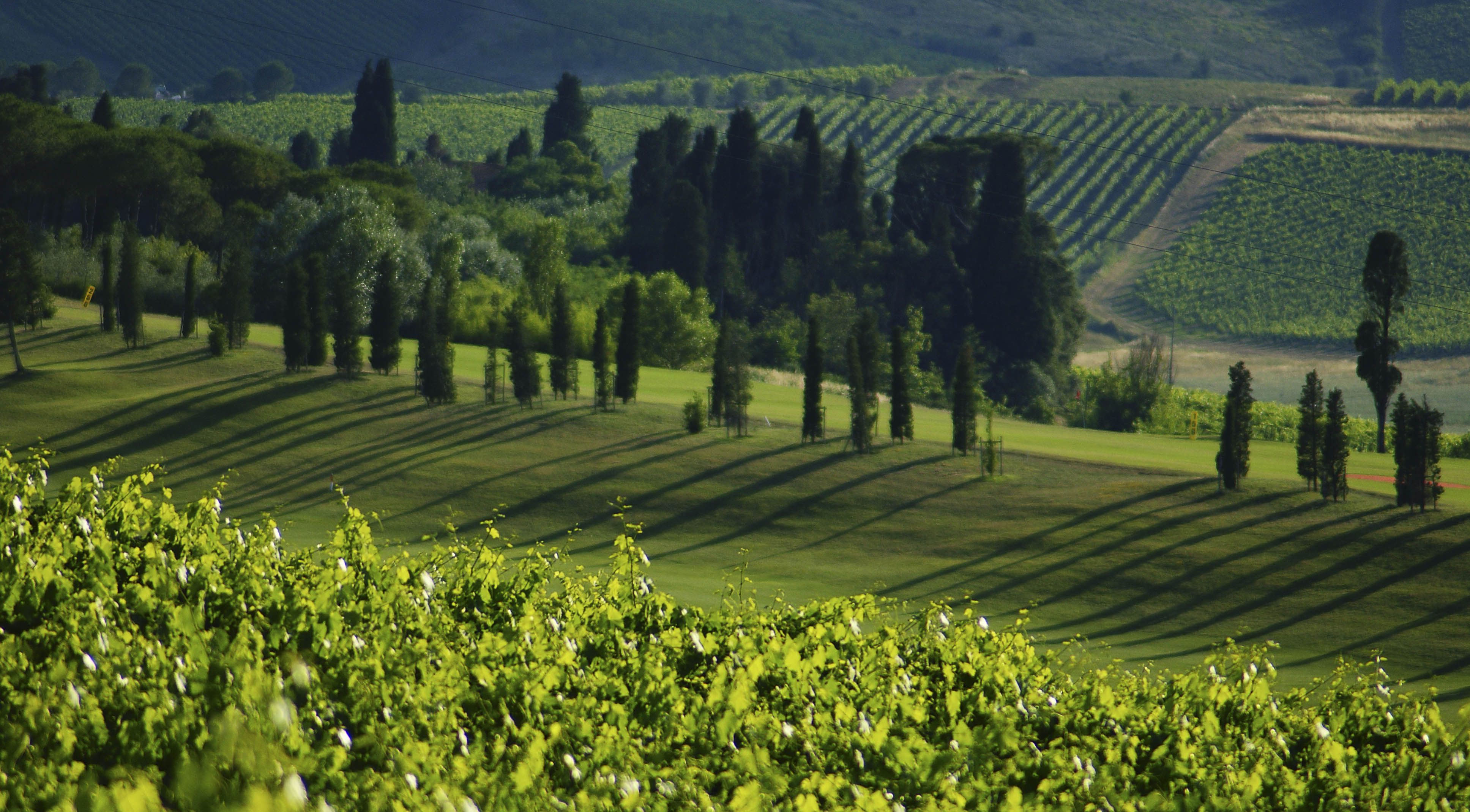 Comune di Vinci; Toscana, 21062015 Toscana