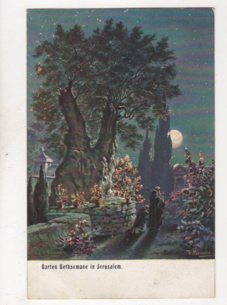 Garden Of Gethsemane Jerusalem Vintage Moonlight Postcard