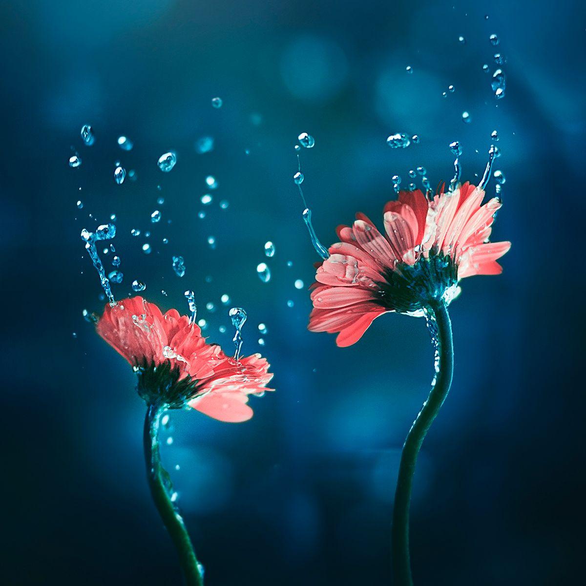 Resultado de imagen para gotas de agua impresionista