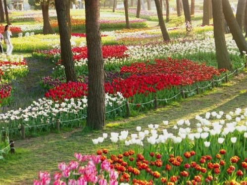 Parques y Jardines Hermosos Searching