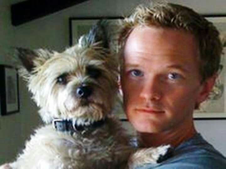 Neil Patrick Harris Cairn Terrier Celebrity Dogs Famous Dogs