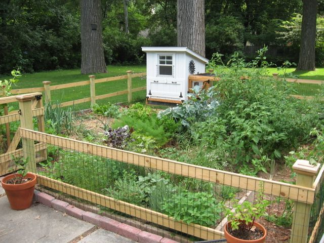 Learn More About Vinyl Garden Fence Garden Defender A Sturdy All - Chicken co op with flowers