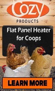 Cozy Coop Flat Panel Heater
