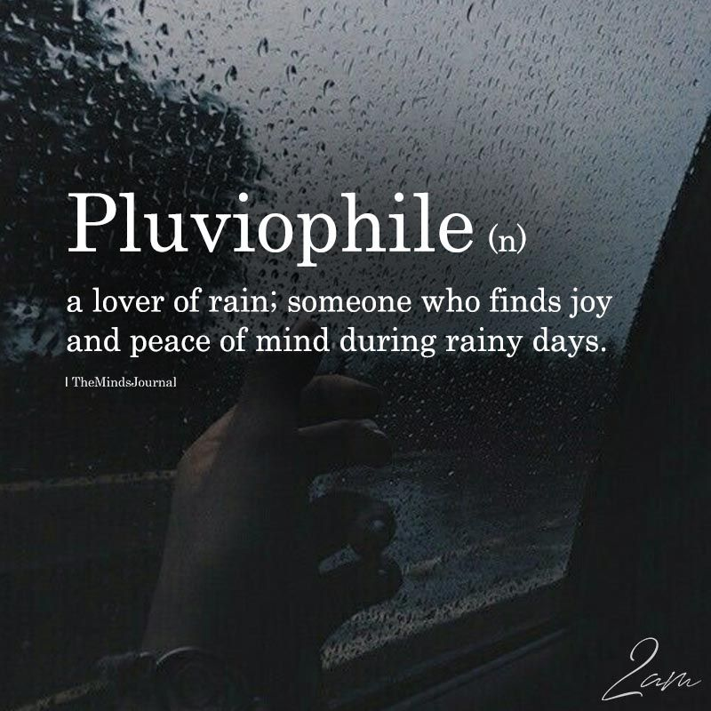 Pluviophile Weird Words Unusual Words Cool Words