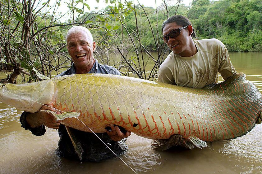 Body Snatcher Pictures River monsters, Jeremy wade