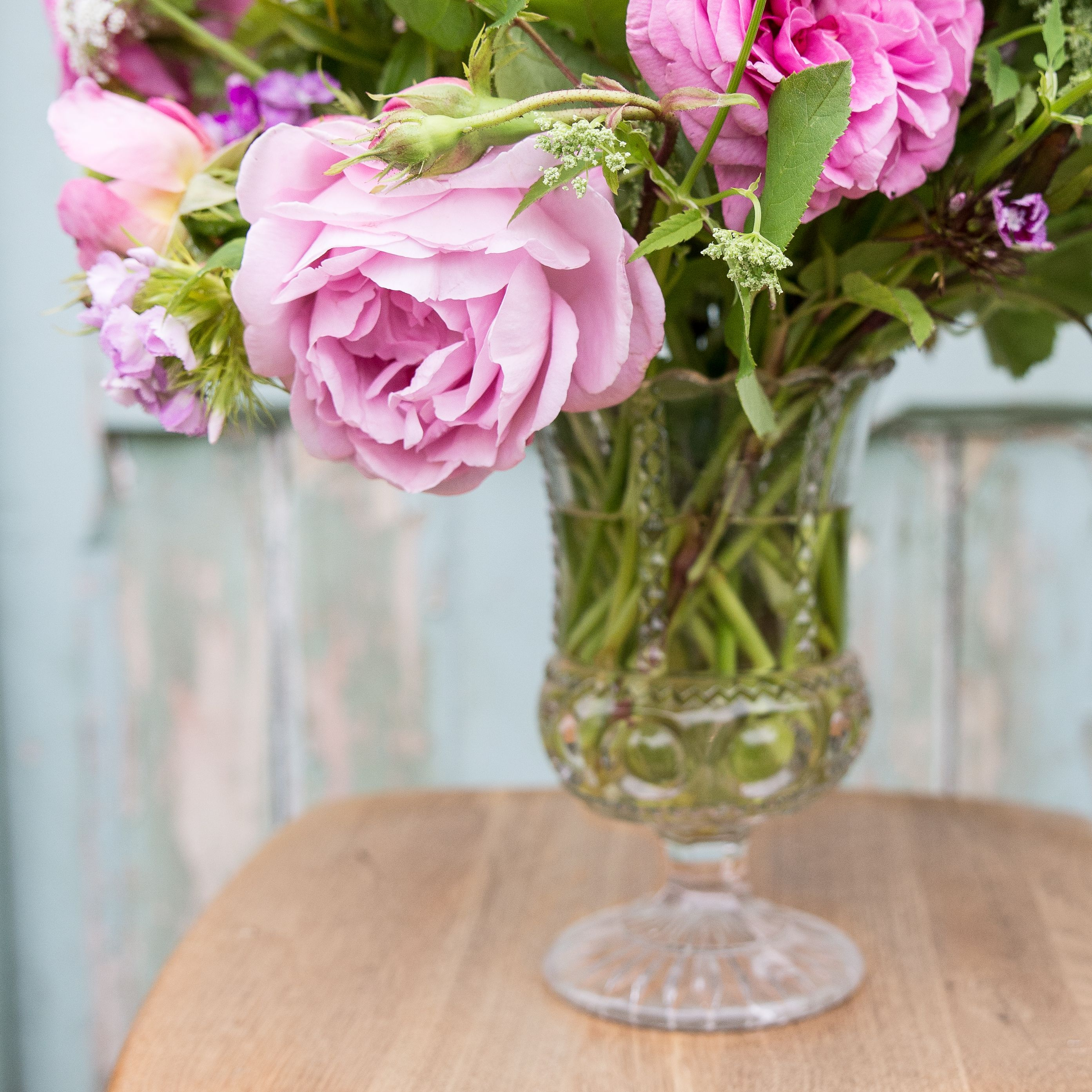 June flowers perfumed constance spry and gertrude jekyll pink perfumed constance spry and gertrude jekyll pink roses in a vintage pressed glass vase photo courtesy of denise wilson reviewsmspy