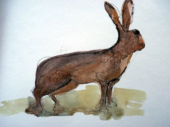 Great watercolor technique on this hare. Animals are so difficult especially in this medium.Hare alert by Ruth McCabe | Artfinder Pinned by www.galleryvessel.com