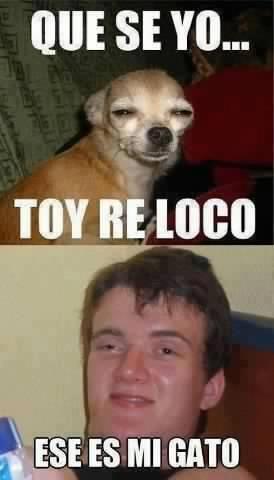 Memes Chistosos De Borrachos Google Search Bad Jokes Memes Funny