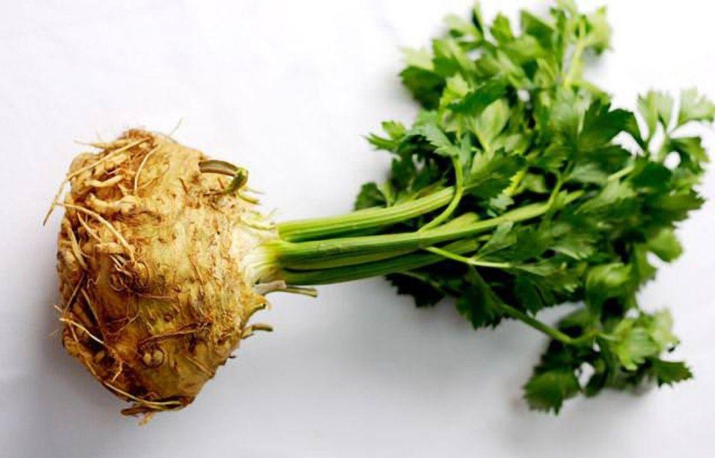Celeriac-Website-Featured-1024x656