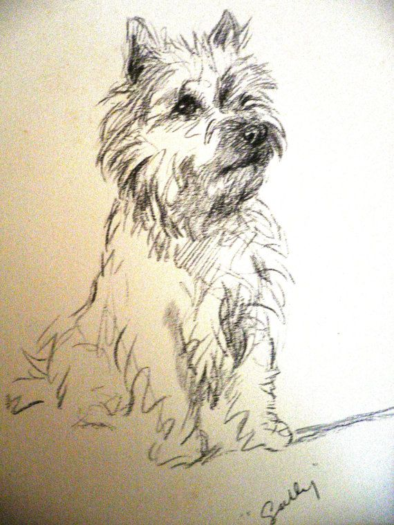 Cairn Terrier Vintage Mounted 1937 Mac Lucy Dawson Sally Cairn