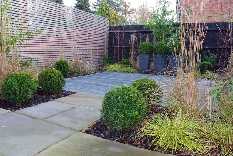 Sutton Garden Design Contemporary Evergreen Planting With
