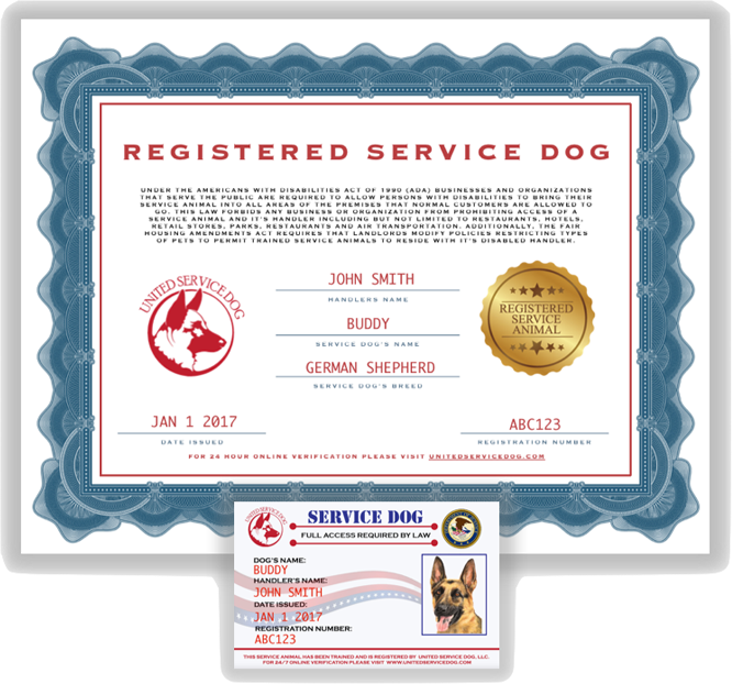 Dog service Registration online in minutes Service dogs