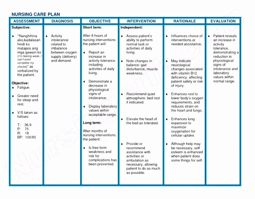 Nursing Care Plans Template in 2020 (With images