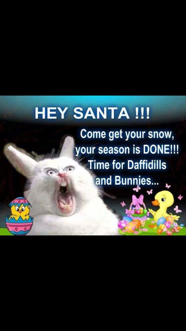 Bunny time lol