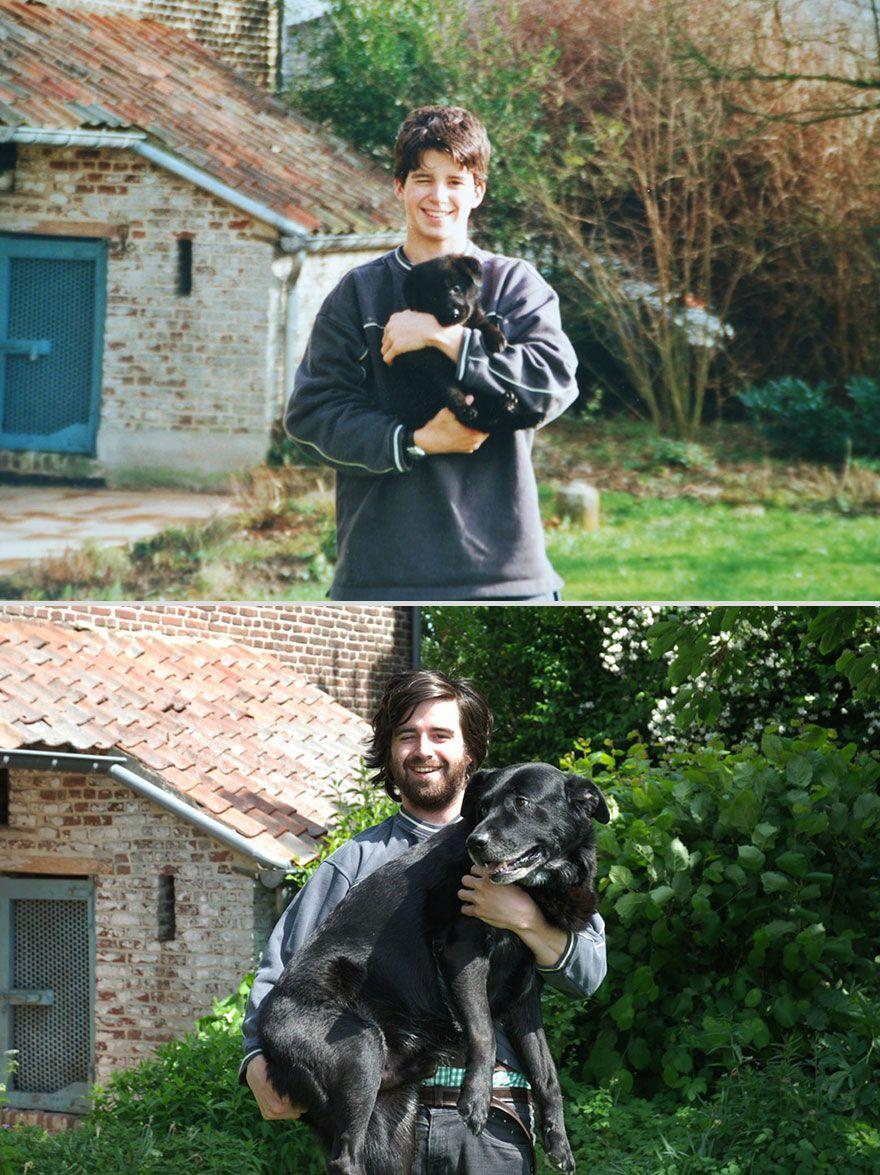 adoráveis imagens 'antes e depois' de animais crescendo com seus donos