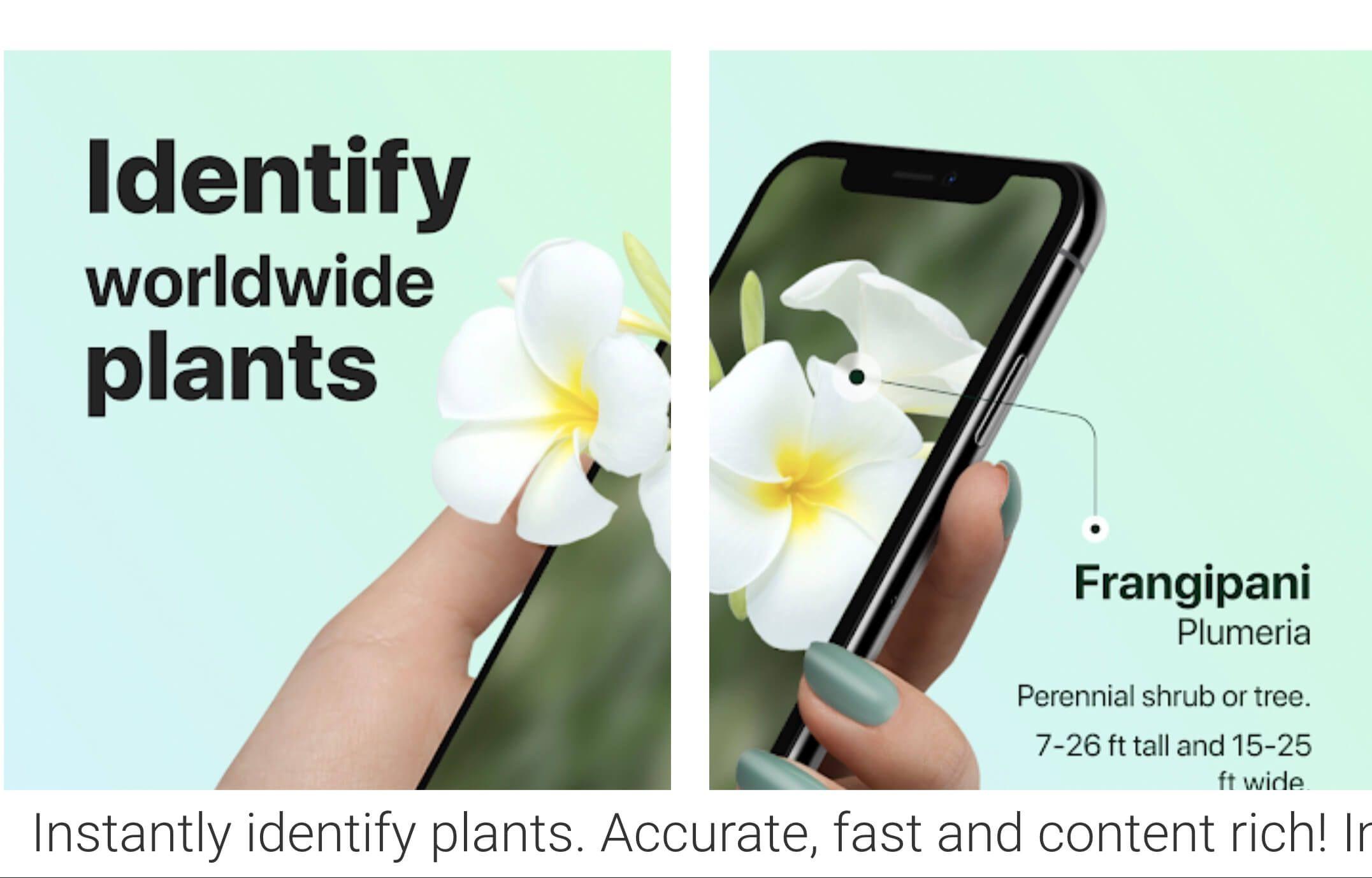 98f081fd663157d79428c914e3e3b38e - Best Free Gardening Apps For Android