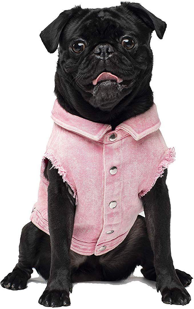 Canada Pooch Denim Dog Vest Review Denim dog, Dog vest, Dogs