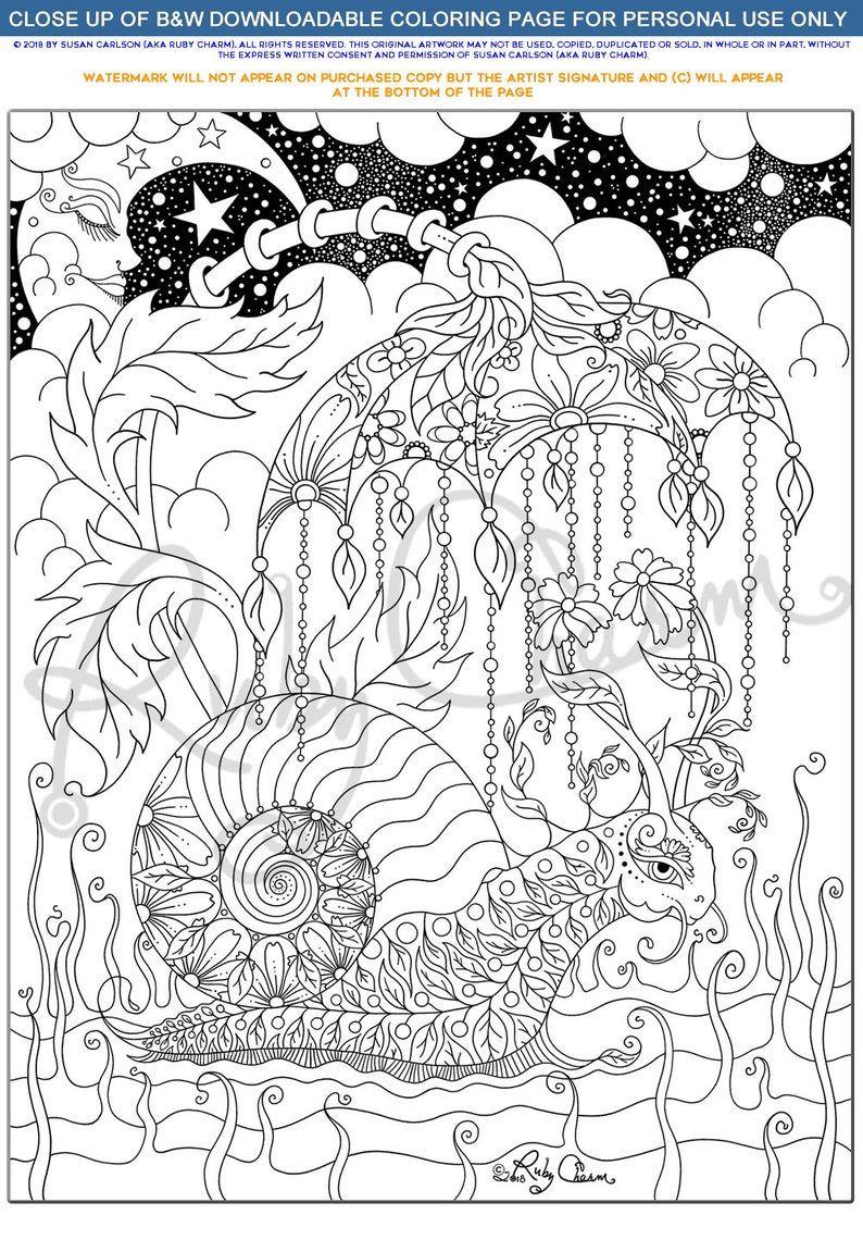 Pin Auf Malbucher [ 1151 x 794 Pixel ]