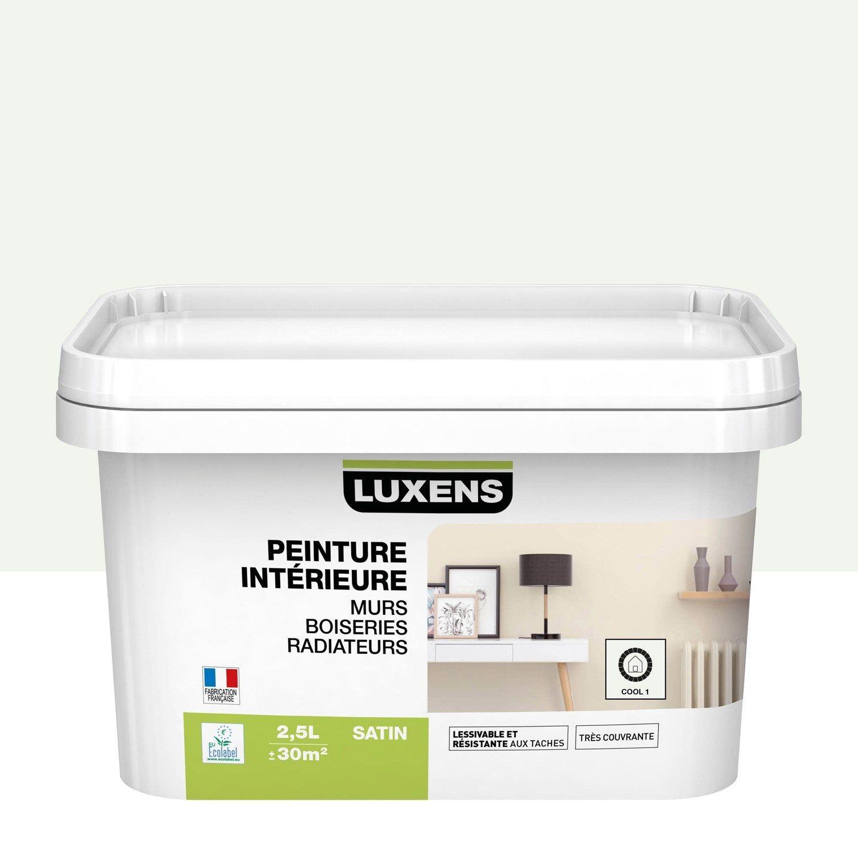 Peinture Mur Boiserie Radiateur Multisupports Luxens Cool 1 Satine 2 5 L Peinture Mur Radiateur Et Granit