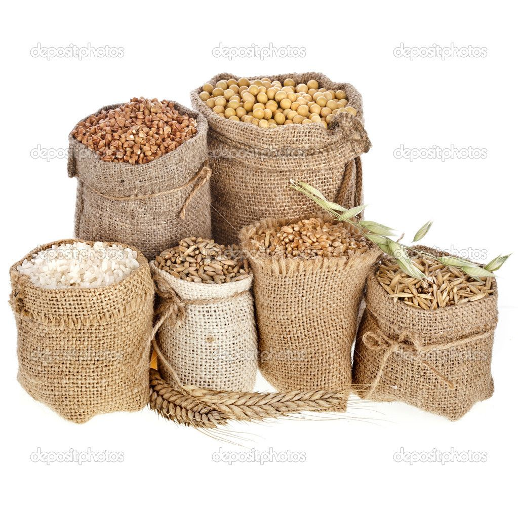 depositphotos_38075961-Collection-set-of-seed-meal.jpg (1023×1003)