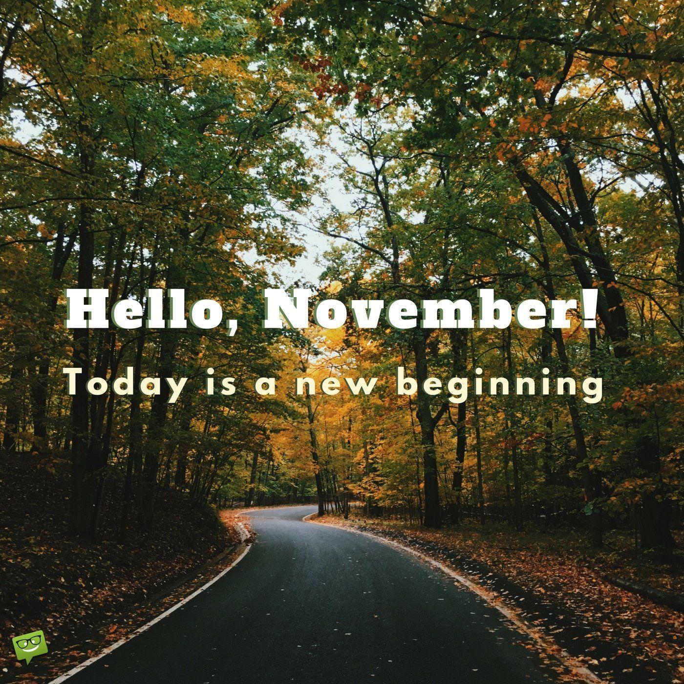 Hello, November! #hellonovemberwallpaper Hello, November. Today is a new beginning! #hellonovemberwallpaper Hello, November! #hellonovemberwallpaper Hello, November. Today is a new beginning! #hellonovemberwallpaper
