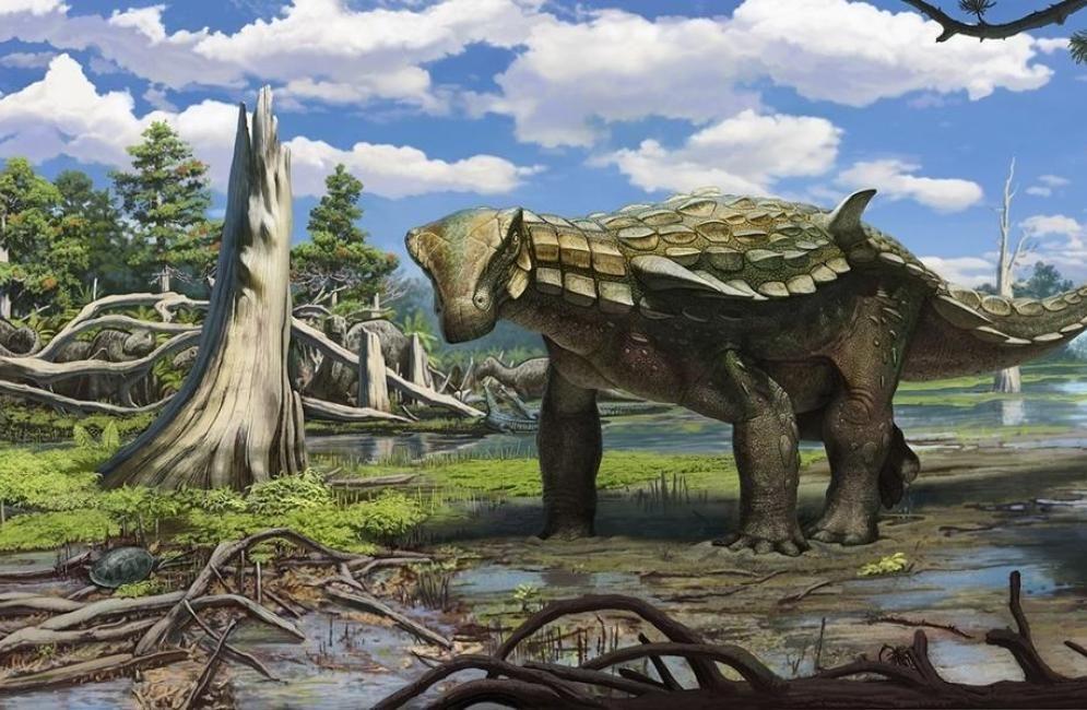 Pin En Paleoilustraciones