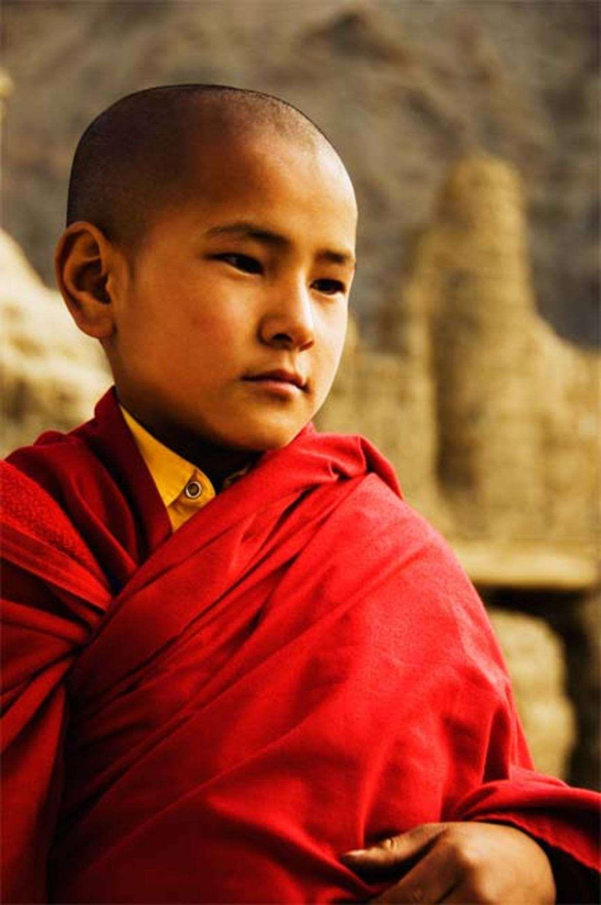 Ordain a Monk/Nun ☸️ a monk, Buddhist teachings