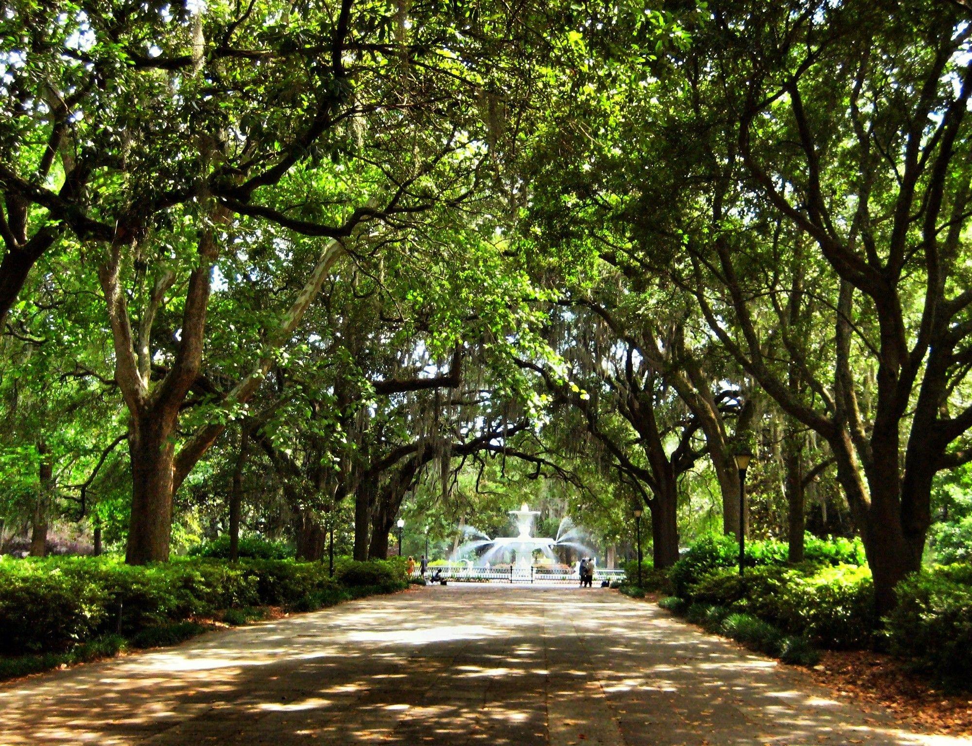 An Actually Useful Guide to Savannah, Georgia | Savannah ...