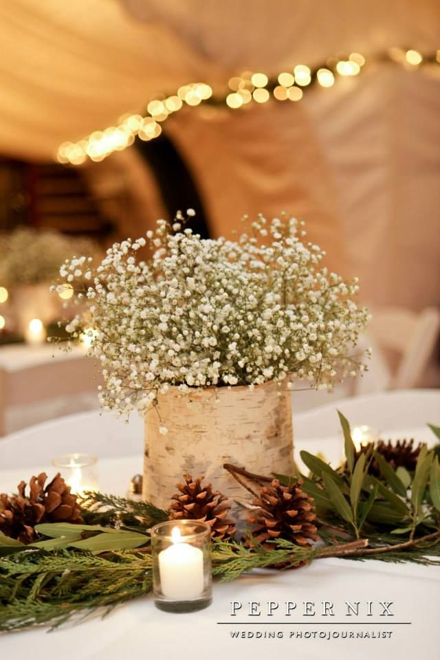 Baby S Breath And Pine Cone Centerpiece In The Winter Conservatory Pepper Nix Photography Baby Shower Centerpieces Winter Centerpieces Rustic Winter Wedding