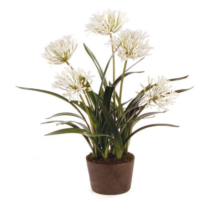 Agapanthus 29 in. DropIn Silk Plant DI1263, Napa Home