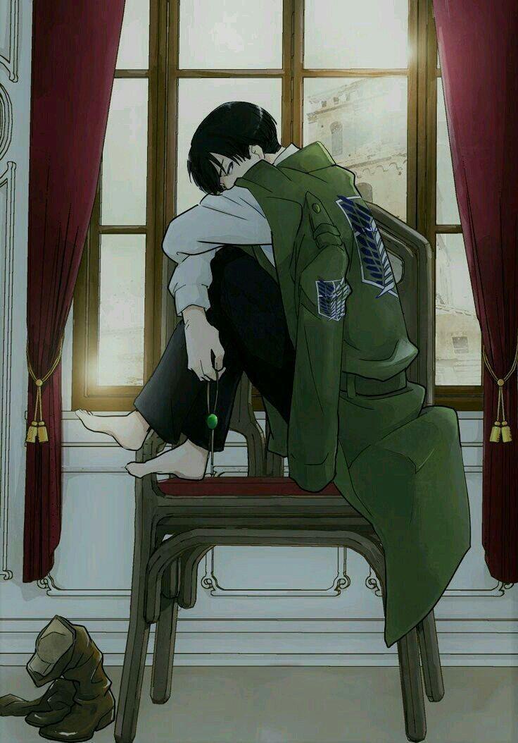 Manga|Anime x Reader • Fermeture Temporaire - • X| Levi Ackerman x Reader