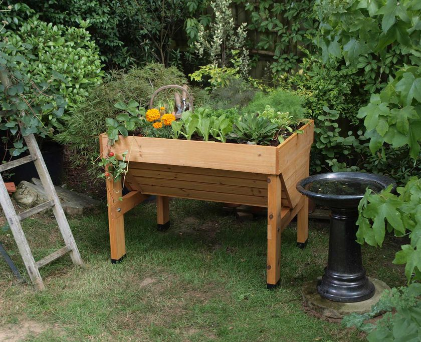 Compact Vegtrug Patio Garden Convenient Elevated Raised Bed Home And Garden Garden Elevated Garden Beds Veg Trug