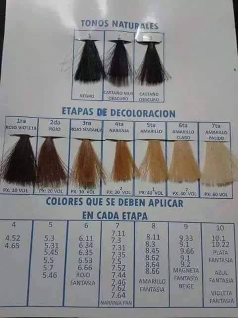 Etapas De Color Y Colores A Aplicar Decoloración De Cabello Fórmulas Para Color De Cabello Etapas De Decoloracion