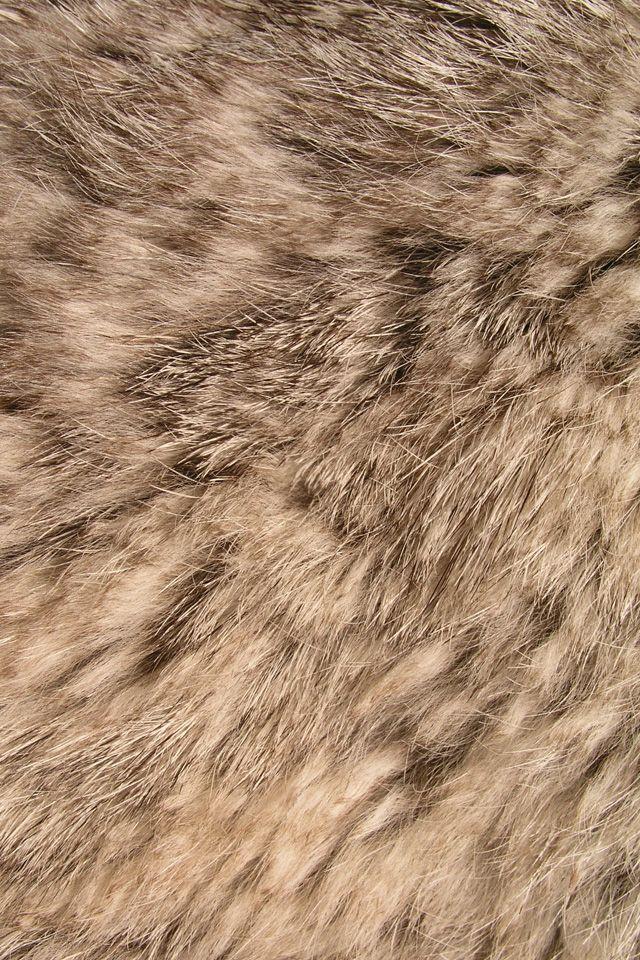texture fur animal background - photo #18